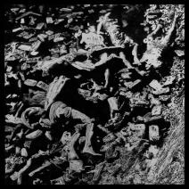 2MAALEE_1943